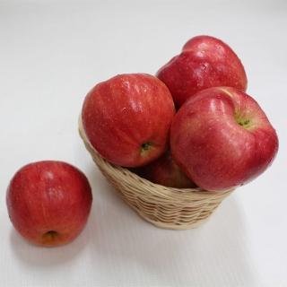 [15일데이] 1212타임 빨간 사과 5kg내외(26과내외)
