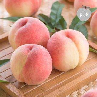 [라스트위크] 10분어택 여름 제철 꿀맛 털복숭아 2kg