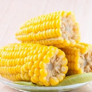 [무료배송] 달콤한 초당옥수수 18개입 10-14cm
