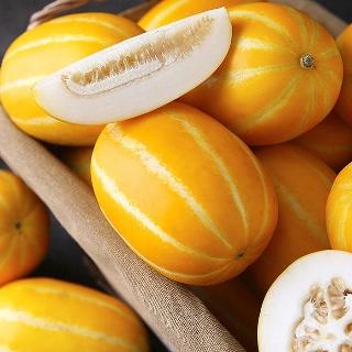 [10분어택] 10+3 / 15+5  꿀당도 성주참외 로얄과 실중량 1알 150-250g 내외